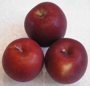 Apples, Arkansas Black