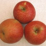 Apples, Harrell's Red