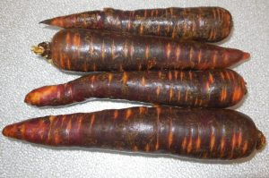 carrots-purple
