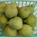 Figs, Green