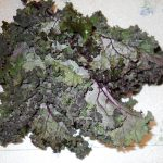 Kale, Red