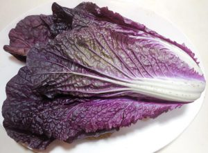 Napa, Red Cabbage