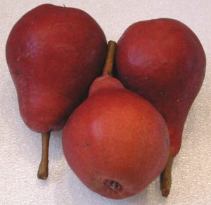 Pears, Red Clapp