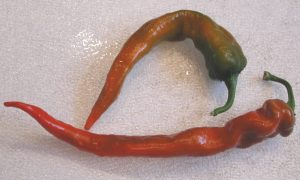 Pepper, cayenne