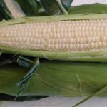 Corn on the Cob, White